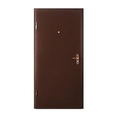 Металлическая дверь ПРОФИ IS